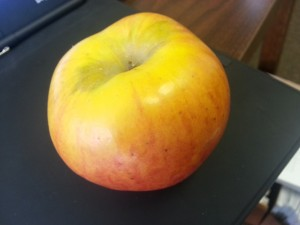 TJ Henderson's First Lady Alice apple