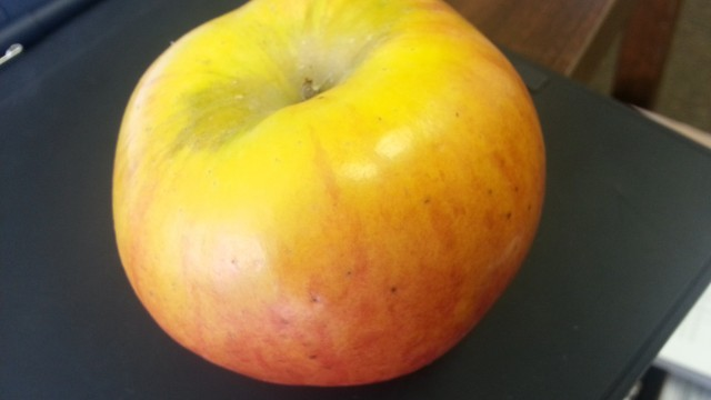Adventures in Produce – Lady Alice Apples